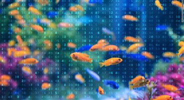 A Smart Fish Tank Left a Casino Vulnerable to Hackers