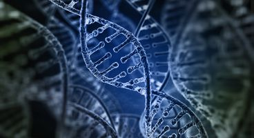 Researchers  are Storing Full Computer Operating System on DNA