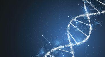 The Infinite Promise 'DNA-Based Data Encryption'