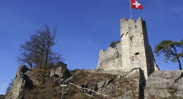 Swiss Military Hit by Series of Cyber Attacks - Cyber security news