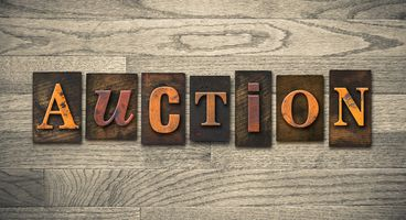Zero Day Auction for the Masses