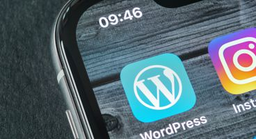 WordPress Plugin Give – Stored XSS for Donors - Cyber security news