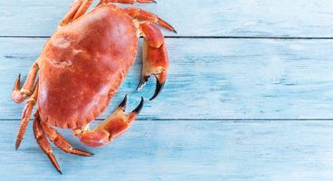 Free GrandCrab Ransomware Decryption Tool Released by Bitdefender - Cyber security news