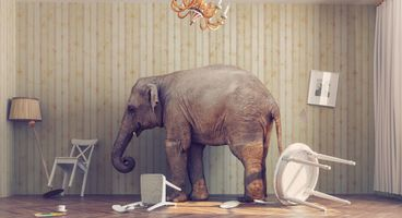 LUCKY ELEPHANT campaign targets South Asian governments - Cyber security news