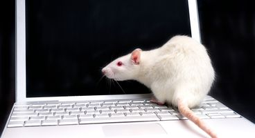 Spotting RATs: Delphi wrapper makes the analysis harder - Cyber security news