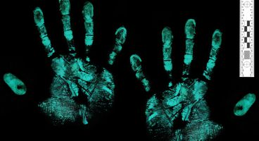These AI-generated fake fingerprints can fool smartphone security - Cyber security news