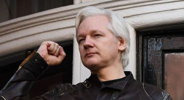 Did Wikileaks Commit A Crime When It 'Guessed' PutinTrump.org's Password? - Cyber security news