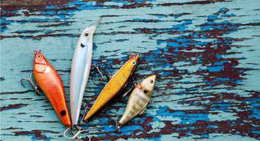 Imperva's Analysis of 1,019 Phishing Kits - Cyber security news