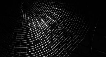 Shedding light on the Deep & Dark Web: Bringing risk intelligence to bear for business benefit