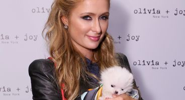 Paris Hilton Hacked, Private Photos, Hundreds of Thousands of Dollars Stolen
