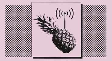 How a Wi-Fi Pineapple Can Steal Your Data (And How to Protect Yourself From It) - Cyber security news