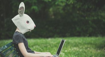 Infrastructure for the 'Bad Rabbit' Ransomware Appears to Have Shut Down - Cyber security news