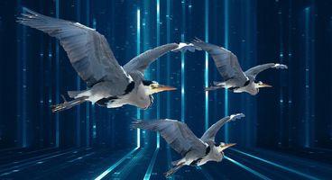 Government Malware Company 'Grey Heron' Advertises Signal, Telegram Spyware