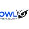 OWL Cybersecurity Appoints Andrew Lewman as Vice President