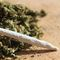 Florida marijuana dispensary website accidentally leaked customer information