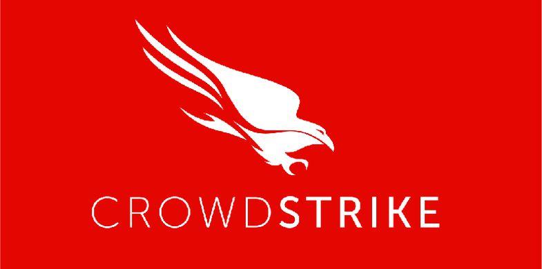 Crowd Strike