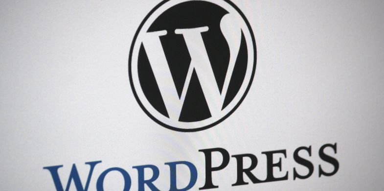 Hackers abuse XSS vulnerability in cart plugin to target WordPress-based shopping sites