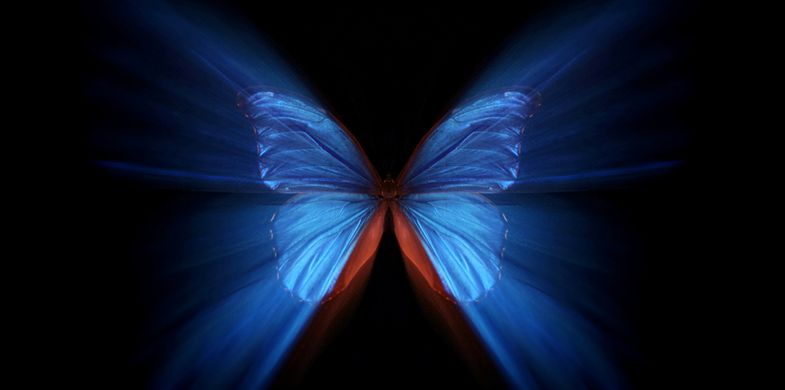 The Butterfly Effect: How Compromise Of Few NPM Package Maintainers Can Lead To Security Chaos?