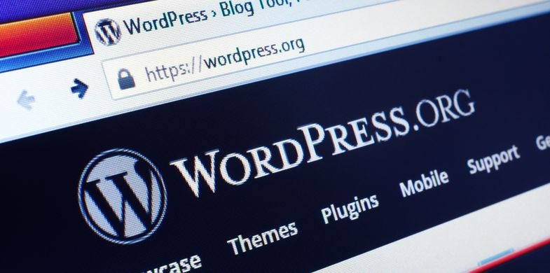 Zero-day vulnerability in 'Total Donations' plugin could allow attackers to take over WordPress sites