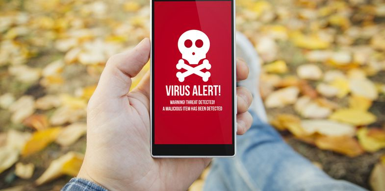 malware,mobile,phone,virus,alarm,alert,app,autumn,communications,connectivity,damage,device,digital,hacking,internet,man,mobility,network,online,park,piracy,protection,relaxing,safety,screen,security,skull,smartphone,technology,touchscreen,warning,wifi,wireless,worm
