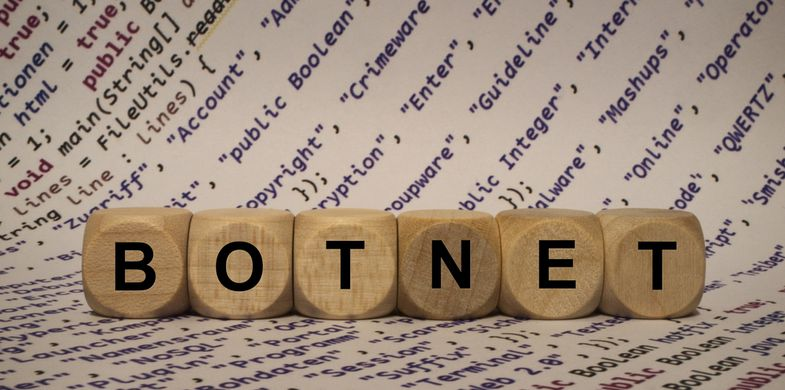 Youngsters give enterprises a mighty scare with their custom IoT botnet