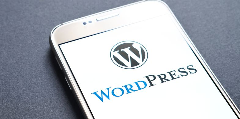 Malicious WordPress plugin encrypts blog post content